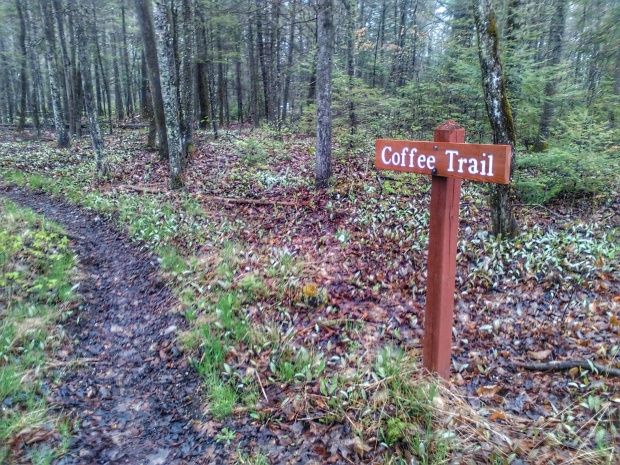 Coffee Trail - Mackinac Island
