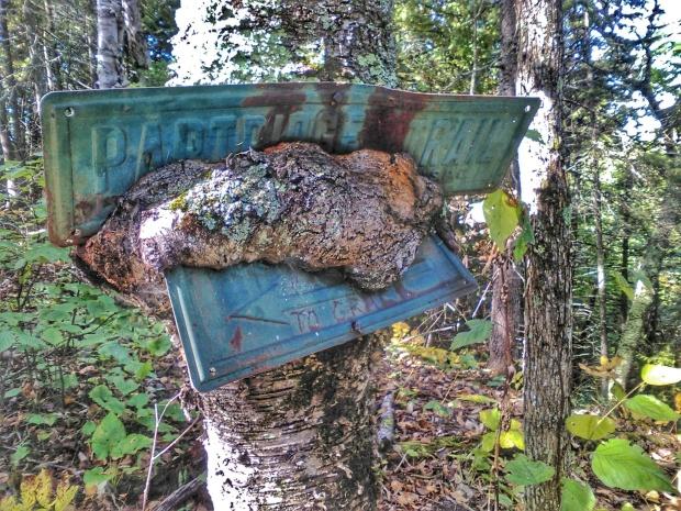 Partridge Trail - Mackinac Island